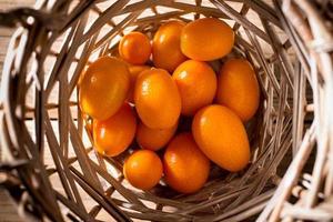 kumquat. photo