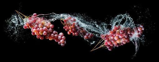 Grappes de raisins dans les éclaboussures d'eau sur fond noir photo