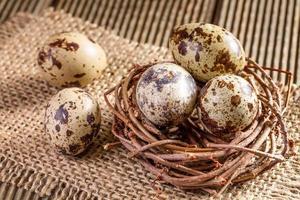 oeufs de caille dans le nid gros plan photo