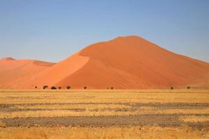 Désert de sossusvlei en namibie photo