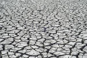 Surface fissurée du désert en arrière-plan
