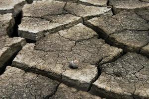 fond de terre craquelée sèche, texture du désert d'argile photo