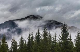 réchauffement climatique. paysage de montagne. nuages et brouillard