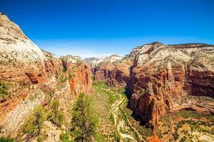 belle vue sur le canyon dans le parc national de zion. photo