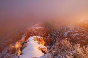 Le brouillard dans le parc national de Bryce Canyon, le soleil se lève