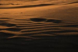 empreinte dans le sable photo