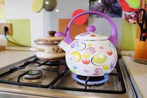 cuisinière à gaz de cuisine
