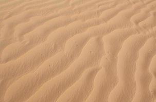 texture de sable ondulée photo