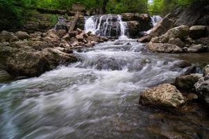 cascade de la forêt