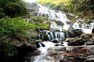 chutes d'eau dans les forêts d'automne