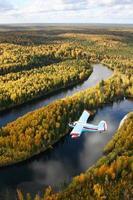 avion au-dessus de la forêt photo
