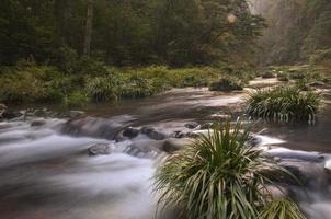 Parc forestier géologique national de Zhangjiajie photo