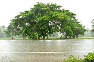 route avec une flaque d'eau de pluie