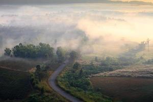 Lever du soleil du matin brumeux en montagne à khao-kho phetchabu photo