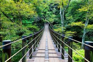 pont suspendu de shiomidaki photo
