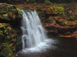 cascade automne