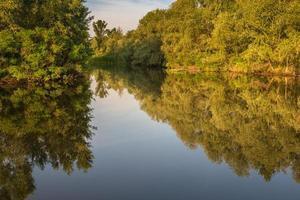 nature de l'Ukraine. juin 2014 photo