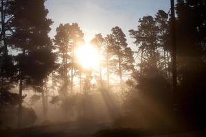 soleil brumeux photo