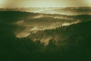 collines brumeuses de la Pologne