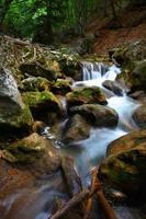 ruisseau de montagne au printemps photo