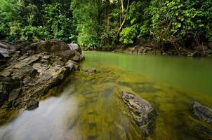 paysage d'une rivière en malaisie