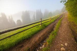 beau lever de soleil avec la brume matinale photo