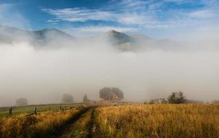 nuages dramatiques avec montagne et arbre photo