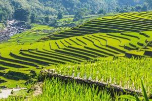 vallée parmi les rizières en terrasses. photo