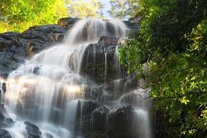 belle cascade de kondalilla. photo