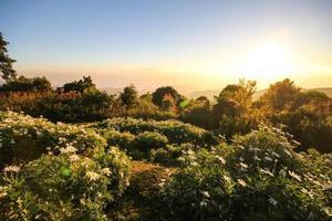 Parc national de Huai Nam Dang, Chiang Mai, Thaïlande photo