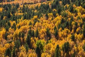 volcan etna avec automne coloré photo