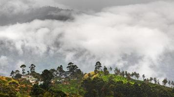 île du Sri Lanka photo