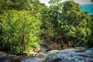 cascade avec piscine dans la jungle tropicale, na muang, koh samui photo