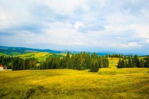 l'été dans les montagnes. Carpates, Ukraine, Europe.