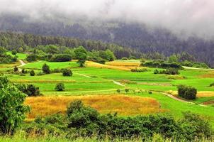 prairie alpine photo