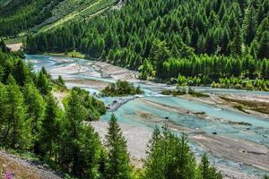 Alpes suisses-River Inn et Pontresina