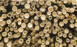 tranche de croix de bambou