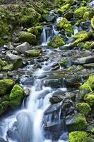 thème du ruisseau de montagne photo