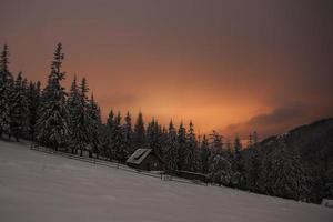 Maison en bois dans la forêt d'hiver dans les montagnes crrpathiennes, la nuit photo