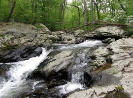 Friend's Creek en mai