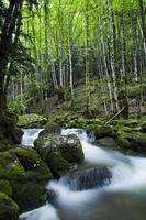 Herisson Fall dans le Jura, France