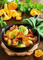 pommes de terre sautées aux chanterelles. photo