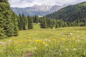 Val Gardena, Selva, Dolomites, Italie photo