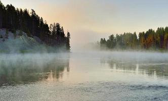 Brouillard sur la rivière dans la vallée de Hayden de Yellowstone