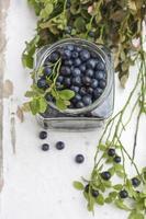 bleuets frais dans un bol, sur une table en bois. photo