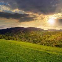 pins près de la vallée dans les montagnes à flanc de colline au coucher du soleil