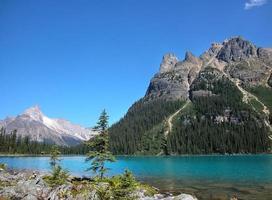 Lac o'hara, parc national yoho, colombie britannique, canada