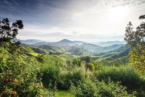 vue sur les montagnes des Carpates photo