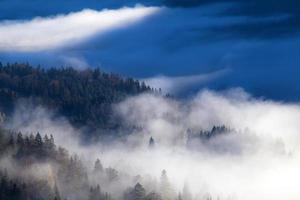 brouillard du matin dans les montagnes photo
