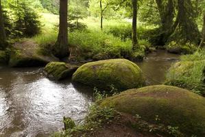 réserve naturelle doost